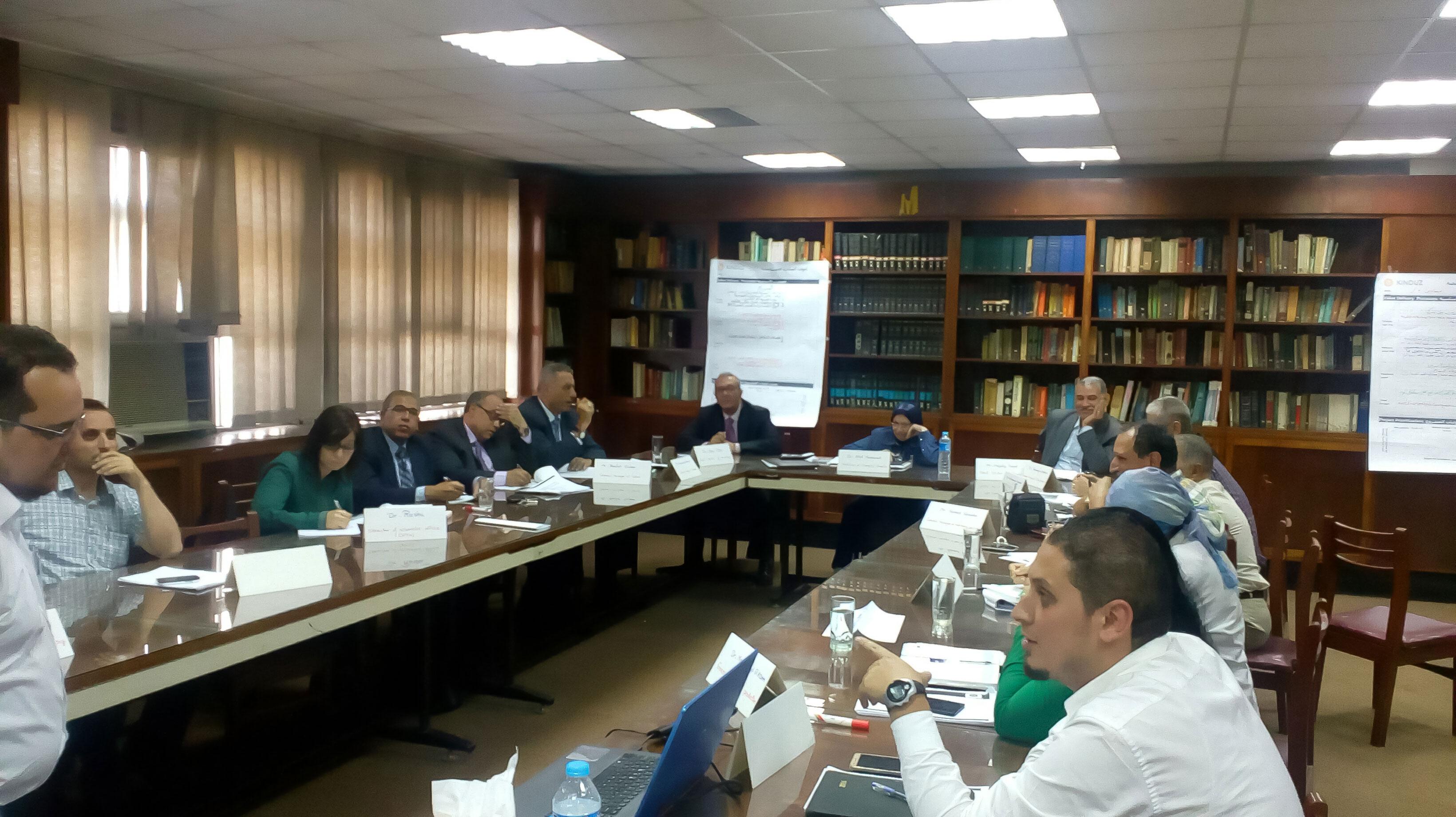 Pharmaceutical Organizations Egypt